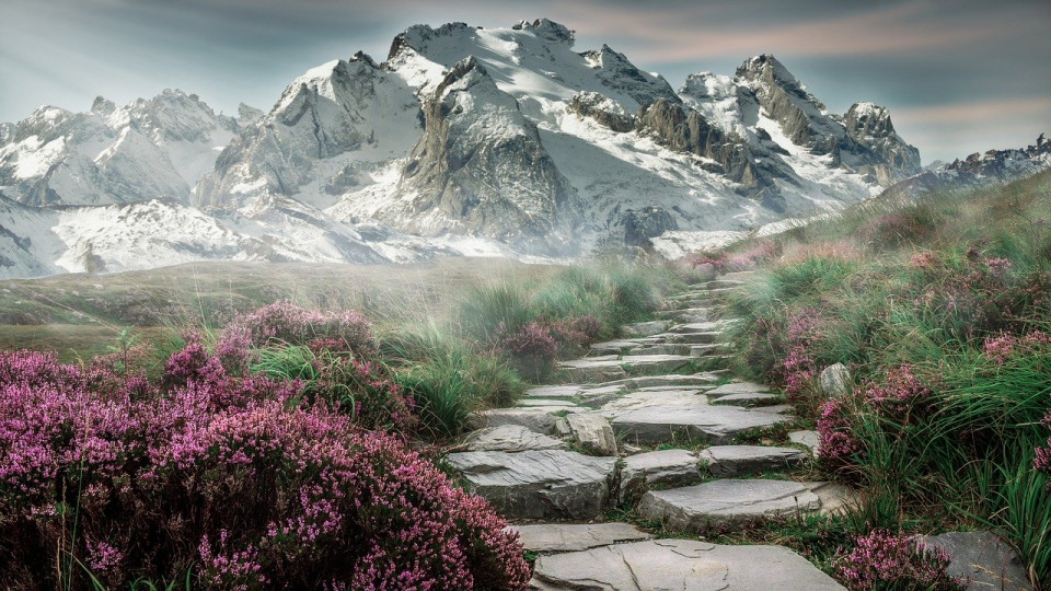 photo of a jagged stone path leading to a mountain