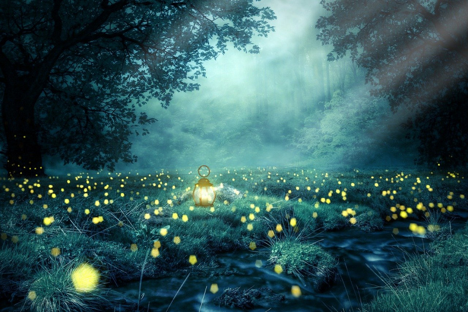 manipulated photo of a foggy meadow with lightning bugs
