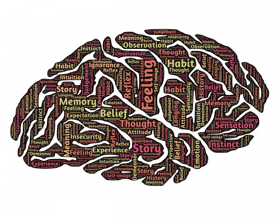 graphic of brain with parts labeled with various concepts Image by John Hain from Pixabay