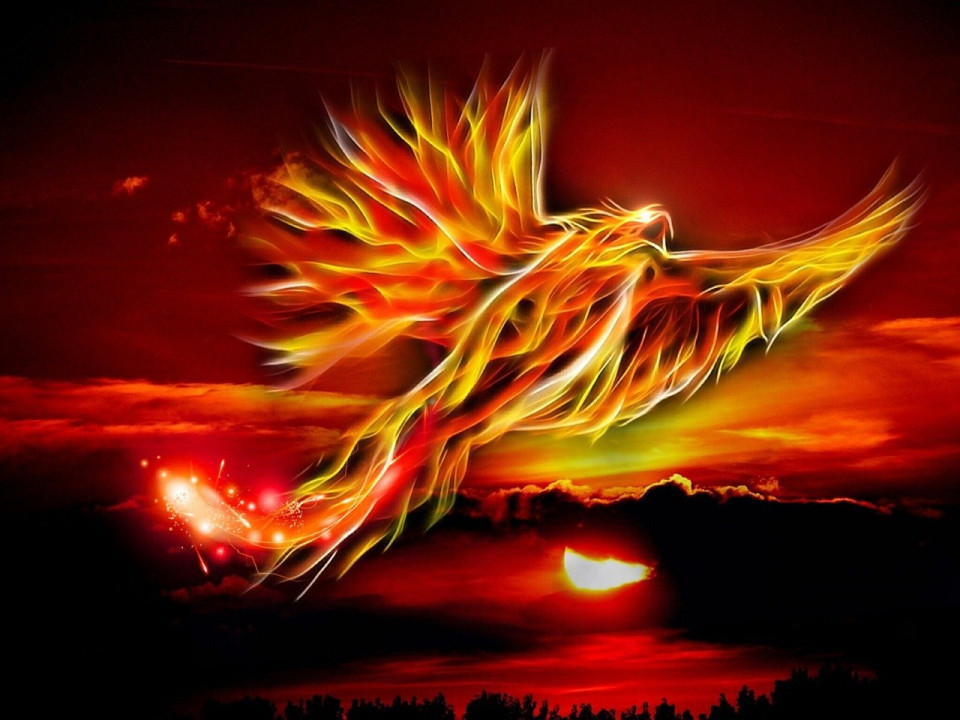 red and gold phoenix flying over a red lake Image by Mystic Art Design from Pixabay