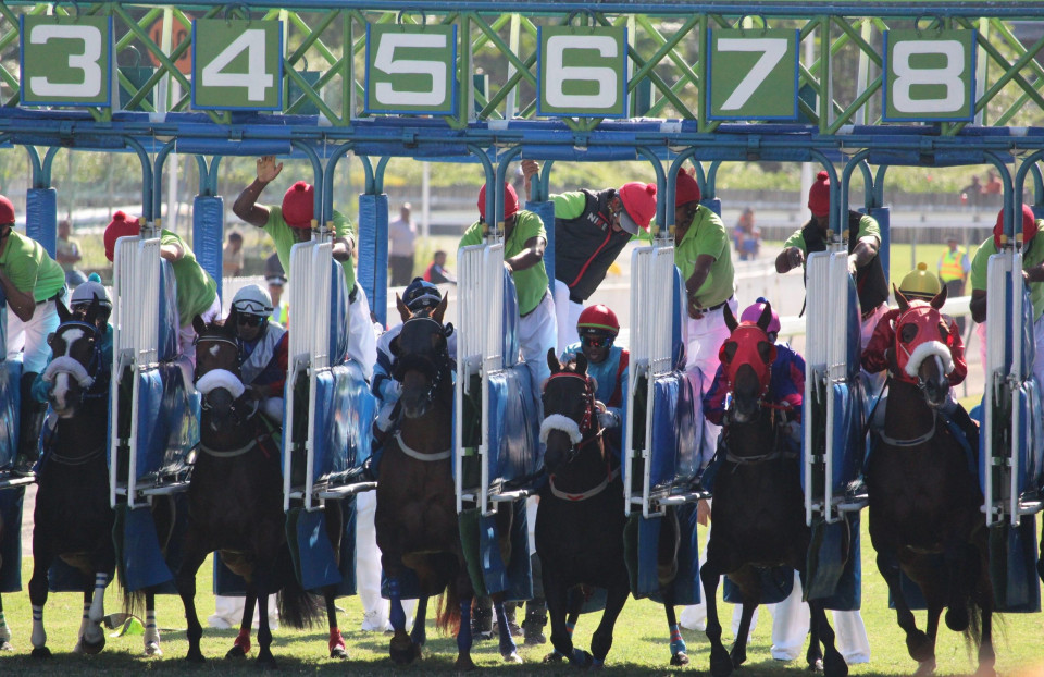 photo of six race horses and their jockeys at starting gates numbered 3 4 5 6 7 9