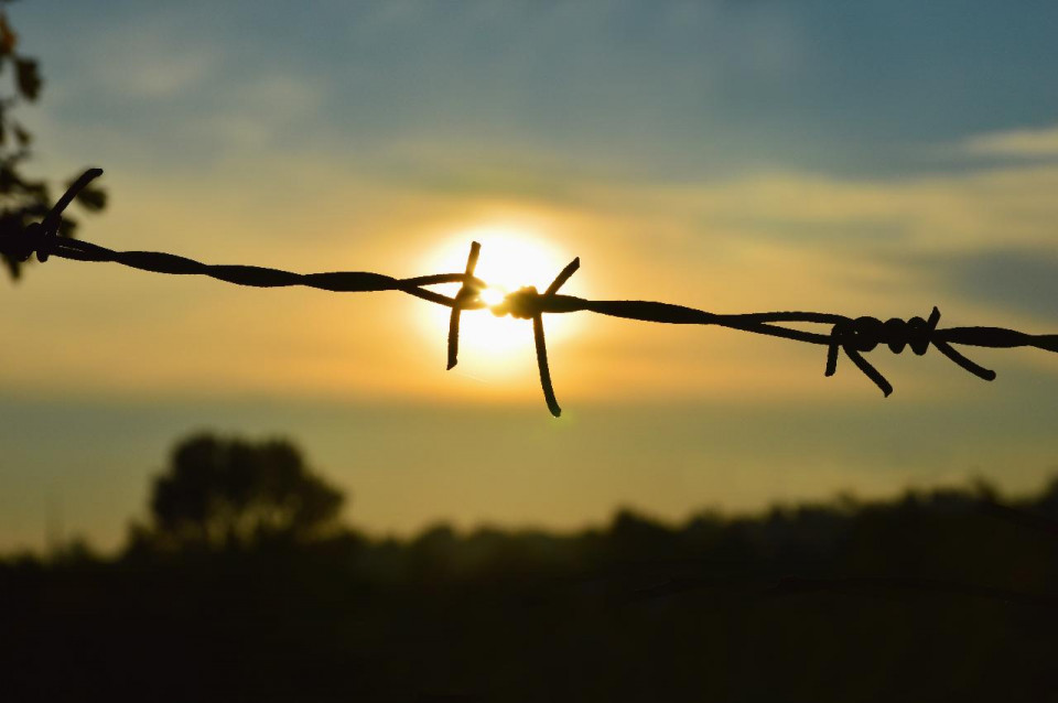 Photo of barbed wire with the sun behind the center bard, against a blurred landscape of blue sky with golden streaked clouds across the center horizontally and blurred trees at the bottom third with one rounded tree taller toward the left edge