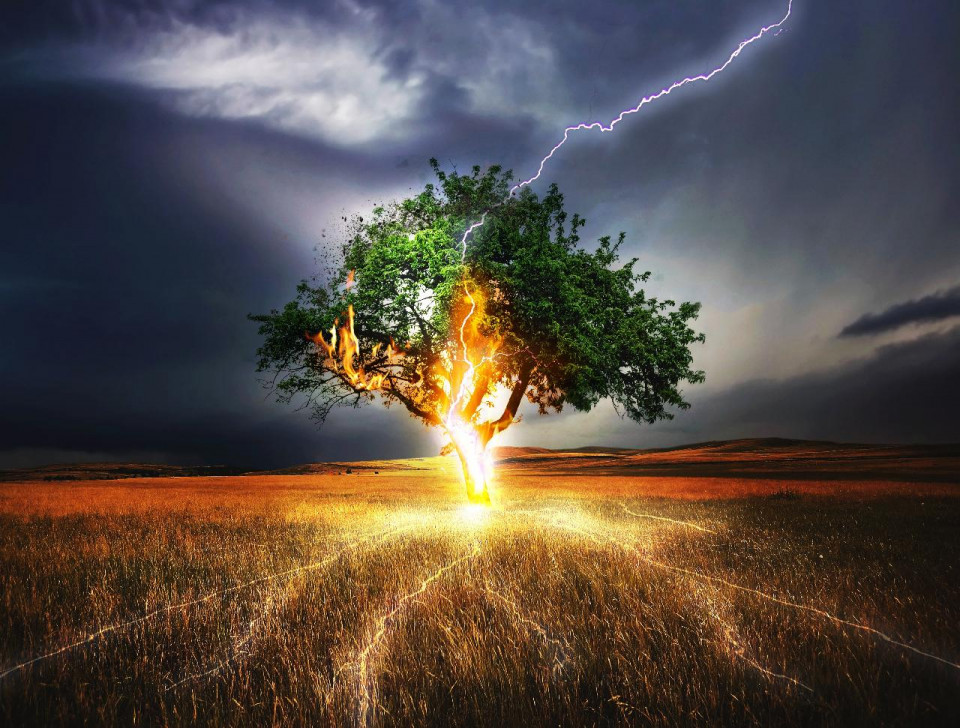 Doctored photo of a dark stormy sky with lightning hitting the central trunk of a wide lush green tree and lighting up lower branches coming out of the right and left center, traveling down the trunk and turning the ground and roots golden, across a brown grassy field